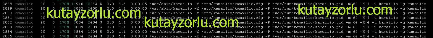 kutayzorlu.com.kamaili.process